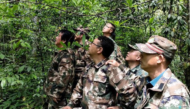泸水市:现场办公找问题 联合巡护筑安全