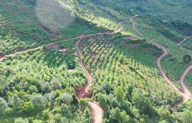 t绘就高质量发展生态底色 兰坪县着力把绿水青山转化为金山银山