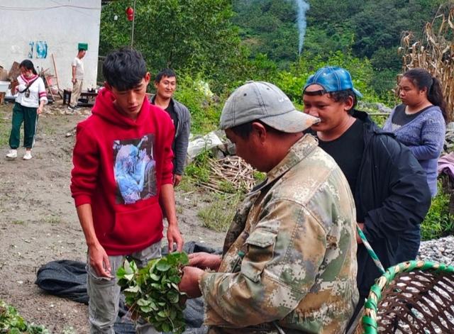 茨开镇发放29.4万株草莓苗惠及农户155户.jpg